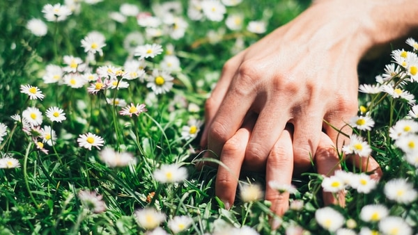 Sexo y Primavera