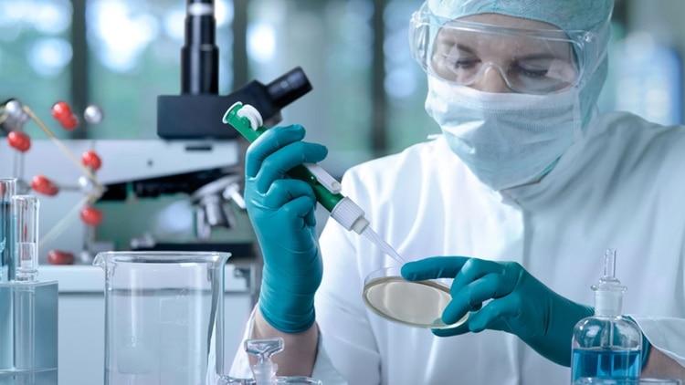 El debate sobre los embriones no implantados: un proyecto de ley busca regular sus usos